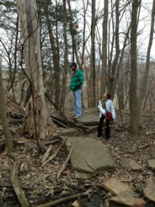 Hiking in the Parkville Nature Sanctuary.