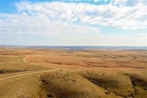 Konza Prairie. Photo by Manhattan Convention and Visitors Bureau.
