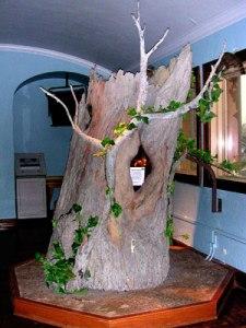 Bee Tree exhibit at KU Natural History Museum.