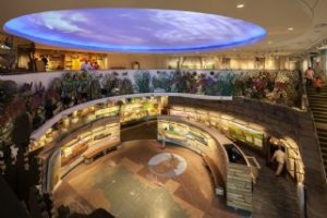 """Exhibits in the Flint Hills Discovery Center help visitors learn about life in the """"Great American Desert."""""""