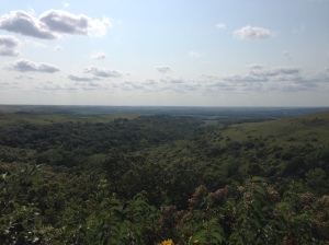 "The view from the Konza Prairie overlook in Riley County is enough to make you want to (in the words of John Muir) ""throw a loaf of bread and a pound of tea in an old sack and jump over the back fence."""